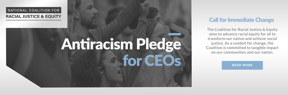 National Diversity Council Pledge Banner